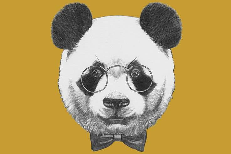 google-panda-seo-algorithme