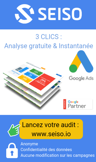 seiso audit google ads